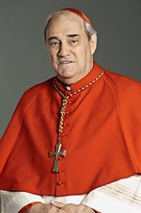 Cardinal_Turcotte_2013_ccb