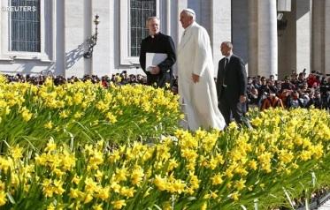 francisco_tulipanes