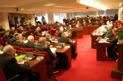 asamblea plenaria cee