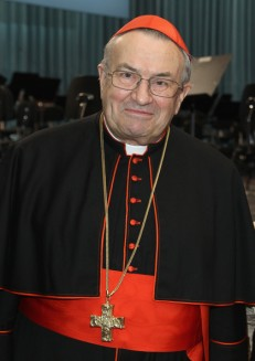 Cardinal+Karl+Lehmann+Reception+Celebrate+ECOQKdA3hU2l